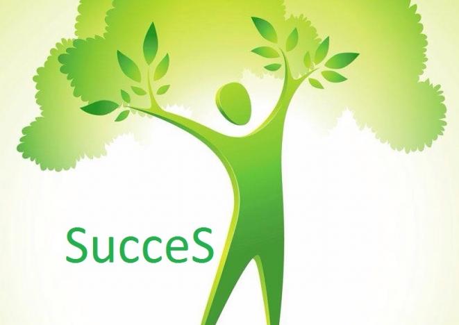 10 reguli pentru succes